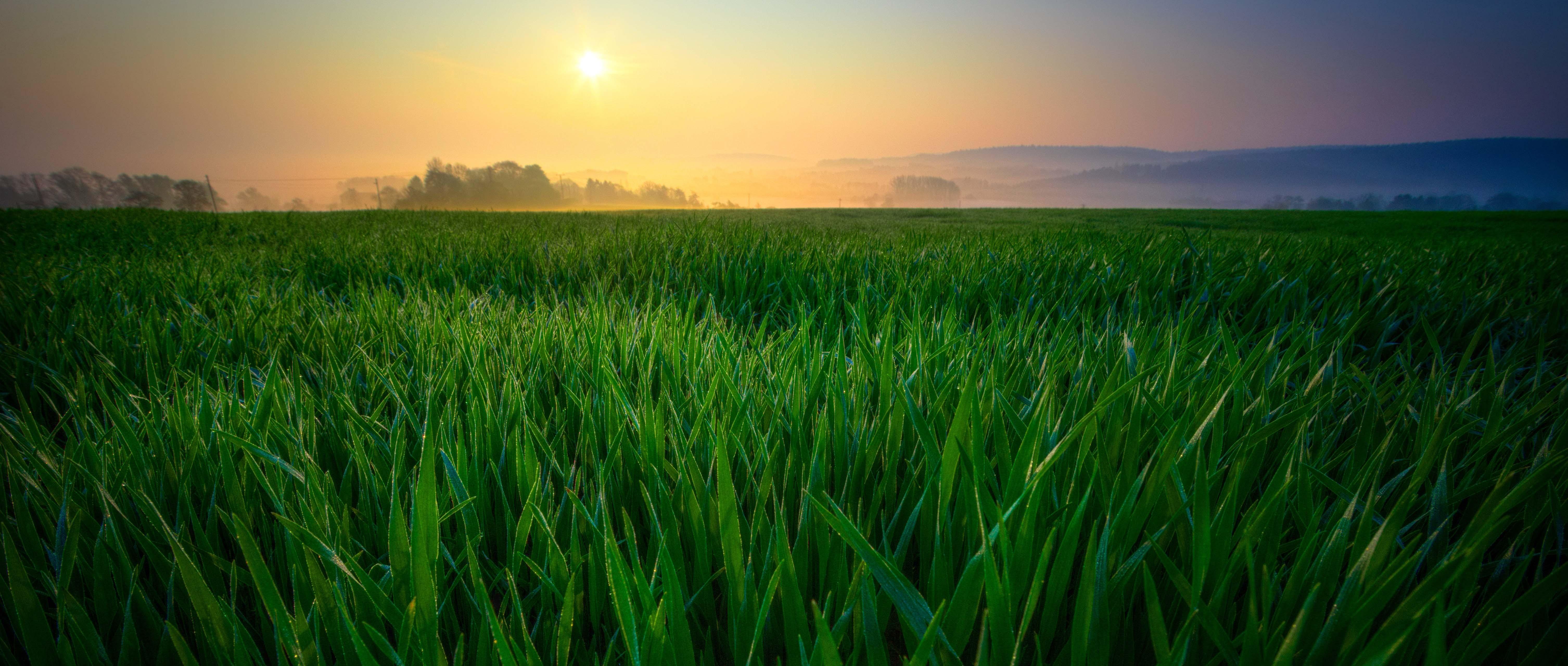 Green Logiststics Nachhaltigkeit